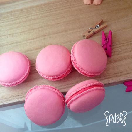 goma iwako macaron rosa Par de 3 Studio Shop
