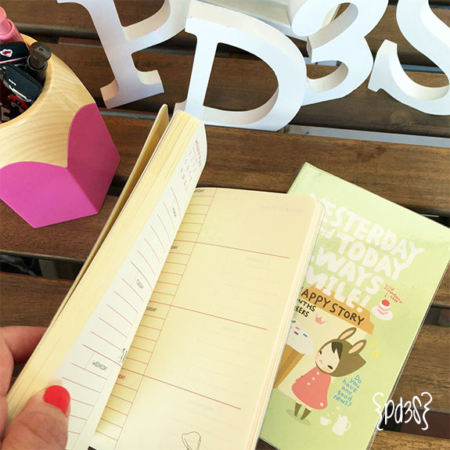 Agenda Pony Brown Par de 3 Studio Shop