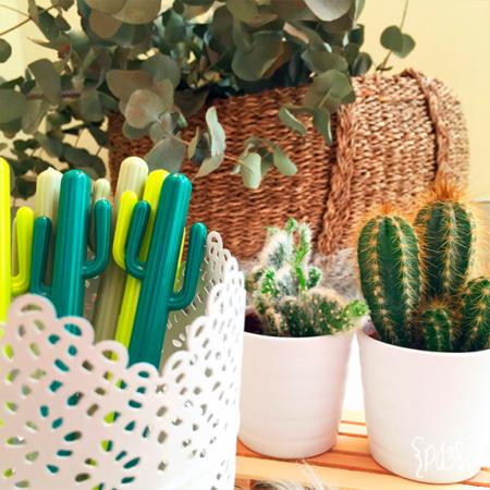 Par de 3 studio bolígrafo cactus