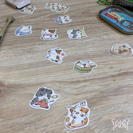 Par de 3 Studio Shop stickers gatos