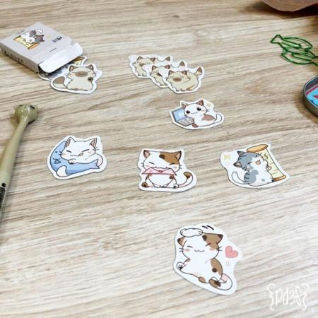 Par de 3 Studio Shop stickers gatos