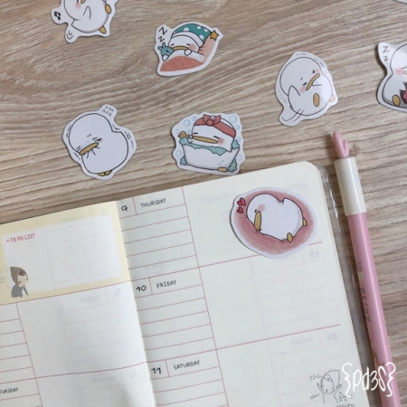 Par de 3 Studio Shop stickers patos