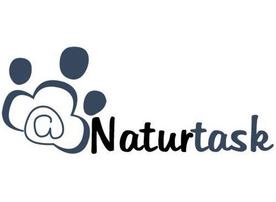 par de 3 studio portfolio naturtask